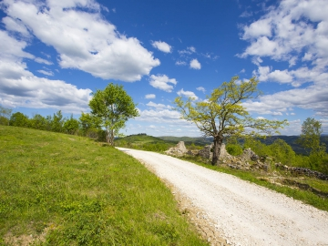 Parenzana biking trail