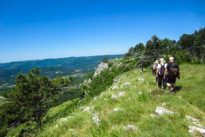 Trails Istria Villa Fiore Spinovci